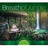 Lucyan - Breath Of Jungle - Relaxing India Spirit